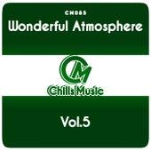 Wonderful Atmosphere Vol.5 de Various Artists
