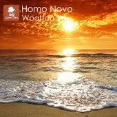 Wootton von Homo Novo
