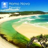 Pewsey von Homo Novo
