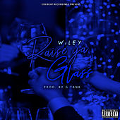 Raise Your Glass by Wiley