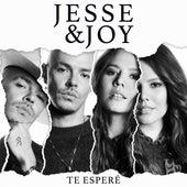 Te Esperé de Jesse & Joy