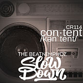 Slow Down de The Beatnimphoz