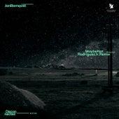 Maybe Not (Rodriguez Jr. Remix) von Jan Blomqvist
