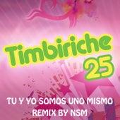 Tu Y Yo Somos Uno Mismo (Remix) by Timbiriche