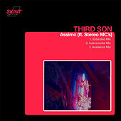 Assimo (feat. Stereo MC's) by Thirdson