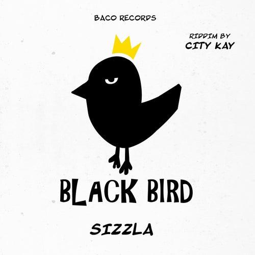 Think Wise (Black Bird Riddim by City Kay) von Sizzla