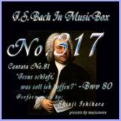 Cantata No. 81, 'Jesus schlaft, was soll ich hoffen?'', BWV 81 de Shinji Ishihara