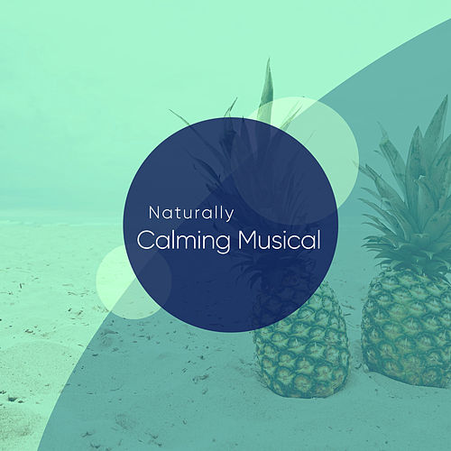 Naturally Calming Musical Classics for Sleep and Relaxing von Schlaflieder Relax