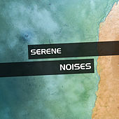 Serene Noises for Meditation by Sounds Of Nature
