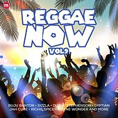 Reggae Now, Vol. 9 by Various Artists