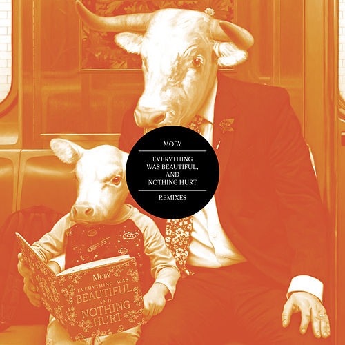 Everything Was Beautiful, and Nothing Hurt (Remixes) de Moby
