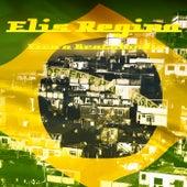 Viva a Brotolândia by Elis Regina