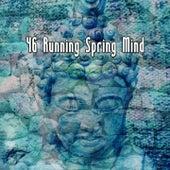 46 Running Spring Mind von Massage Therapy Music