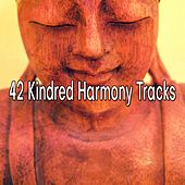 42 Kindred Harmony Tracks by Yoga Workout Music (1)