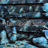 44 Calm Tracks For Soothing de Zen Meditation and Natural White Noise and New Age Deep Massage