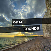 Calm Sounds for Spa Relaxation de Best Relaxing SPA Music