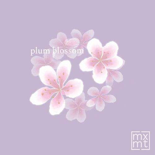 Plum Blossom by Mxmtoon