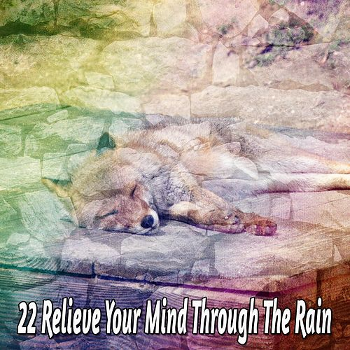 22 Relieve Your Mind Through The Rain by Thunderstorms