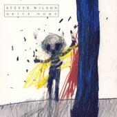 Drive Home de Steven Wilson