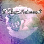 57 Relaxed Environment de White Noise Babies