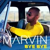 Bye Bye by Marvin