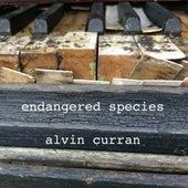 Alvin Curran: Endangered Species de Alvin Curran