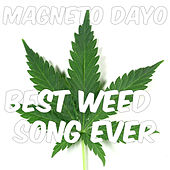 Best Weed Song Ever by Magneto Dayo