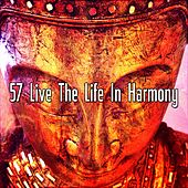 57 Live The Life In Harmony von Massage Therapy Music