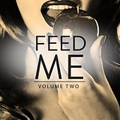 Feed Me, Vol. 2 (Finest Selection Of Modern Progressive House Tuens) by Various Artists
