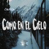 Canta Como en el Cielo de Various Artists