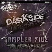 Darkside Unleashed Sampler 5 - EP de Various Artists