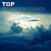 Top Relaxation Sounds – Soothing Nature Sounds, Background Music for Relax & Rest in Peace von Soothing Sounds