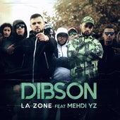La zone de Dibson