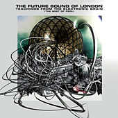 Teachings From The Electronic Brain de Future Sound of London