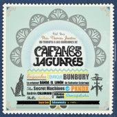 Nos Vamos Juntos - Un Tributo A Las Canciones De Caifanes Y Jaguares. Vol 1 de Various Artists