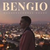 Wunderschönes Chaos von Bengio