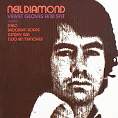 Velvet Gloves And Spit by Neil Diamond