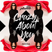 Crazy About You (Remixes) by Plumb