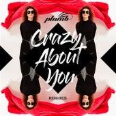 Crazy About You (Remixes) de Plumb