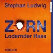Zorn 7 - Lodernder Hass by Stephan Ludwig
