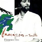 Flamenco Vivo (En Directo / Remastered 2018) de Camarón de la Isla