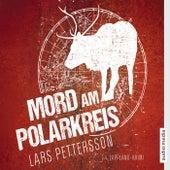 Mord am Polarkreis von Lars Pettersson