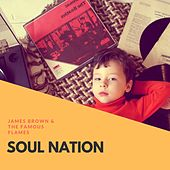 Soul Nation di James Brown