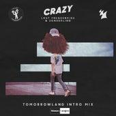 Crazy (Tomorrowland Intro Mix) de Lost Frequencies