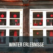 Winter Erlebnisse de Various Artists