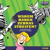 Warum haben Zebras Streifen? (Coole Antworten auf clevere Fragen: Tiere) von Stephanie Mende Anke Susanne Hoffmann