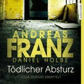 Tödlicher Absturz by Daniel Holbe