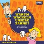 Warum wackeln unsere Zähne? (Coole Antworten auf clevere Fragen: Unser Körper) von Stephanie Mende Anke Susanne Hoffmann