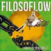Canto de Cenzontle by Filosoflow