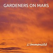 L'immensità (Instrumental version) by Gardeners on Mars